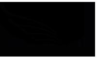 BLAURUNG FILMS Logo